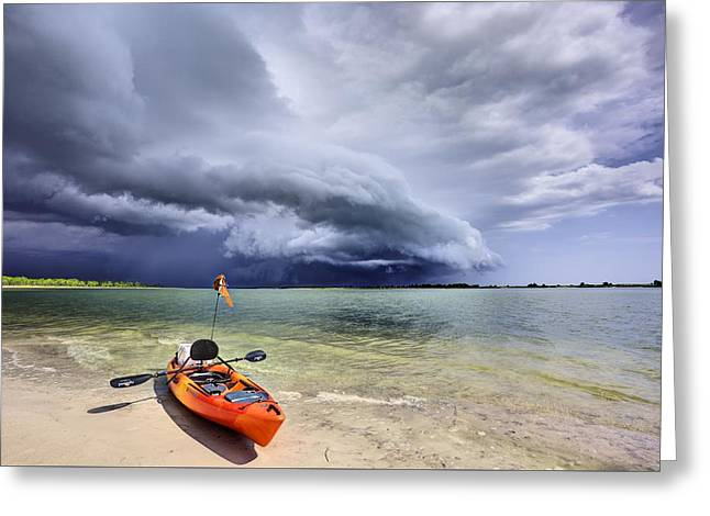 Any Port In A Storm Greeting Card by JC Findley
