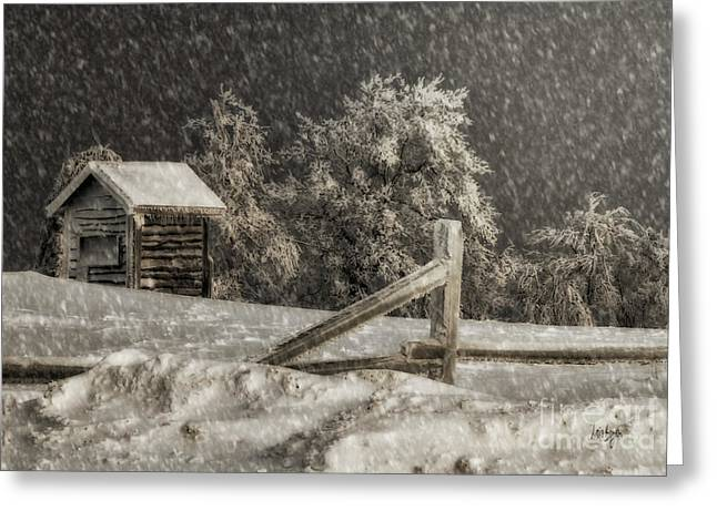 Shed Digital Art Greeting Cards - Any Port In A Storm Greeting Card by Lois Bryan