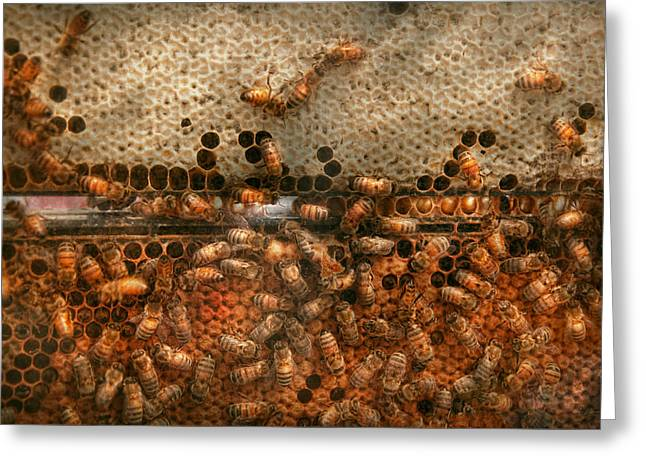 Sweetness Greeting Cards - Apiary - Bees - Sweet success Greeting Card by Mike Savad