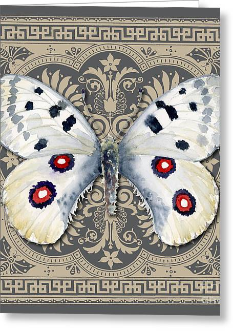 Apollo Greeting Cards - Apollo Butterfly Design Greeting Card by Amy Kirkpatrick