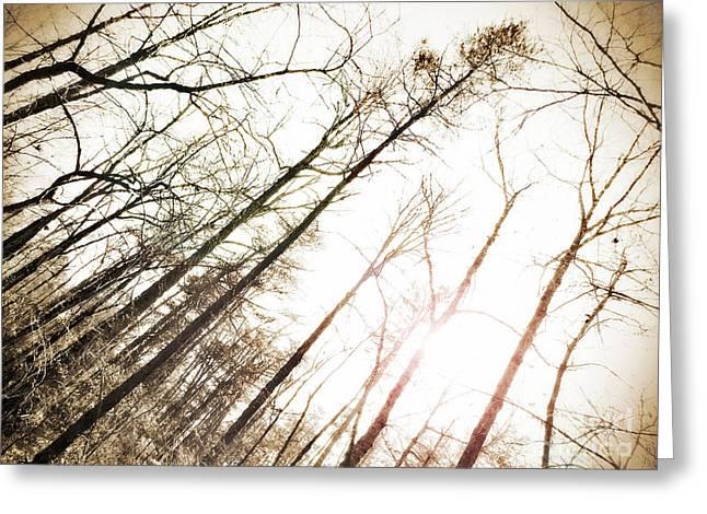 Tears Greeting Cards - Appalachian Sun - 2  Greeting Card by Anita Faye