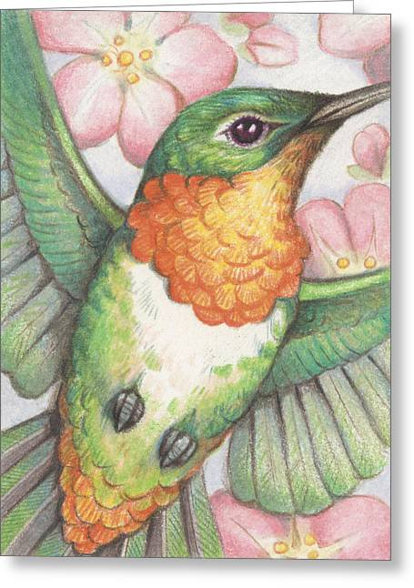 Atc Greeting Cards - Apple Blossom Hummer Greeting Card by Amy S Turner