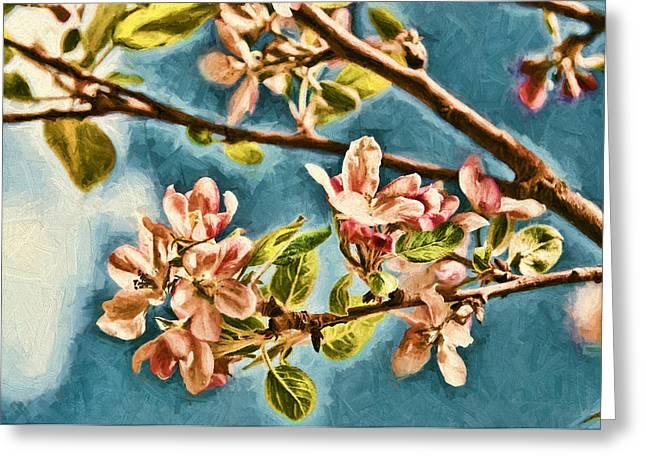 Stamen Digital Art Greeting Cards - Apple Blossoms Greeting Card by John K Woodruff