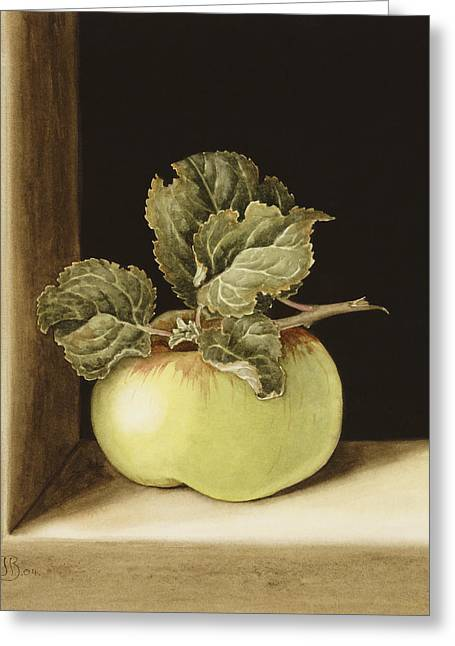 Green Apples Greeting Cards - Apple Greeting Card by Jenny Barron
