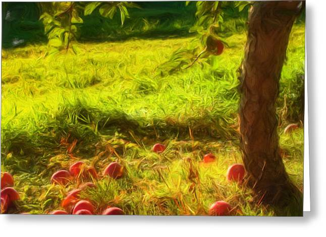 Apple Picking Greeting Card by Joann Vitali