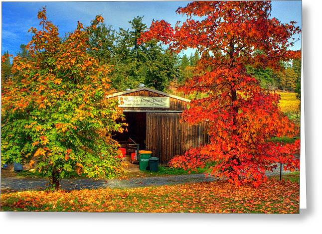 Apple Shed Greeting Card by Randy Wehner Photography
