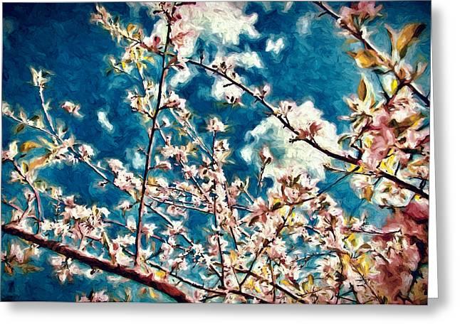 Sonoma County Digital Greeting Cards - Apple Tree in Bloom Greeting Card by John K Woodruff