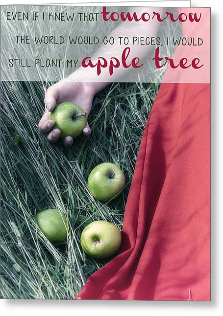 Lady Fingers Greeting Cards - Apple Tree Greeting Card by Joana Kruse