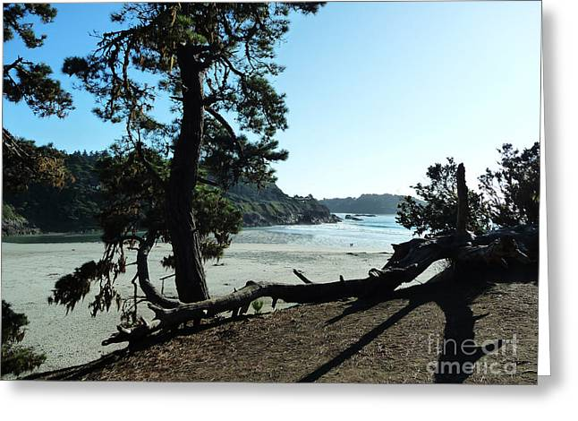 California Beach Greeting Cards - Approaching Greeting Card by JoAnn SkyWatcher