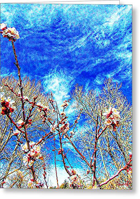 Apricot Digital Art Greeting Cards - Apricot Blossoms El Valle Greeting Card by Anastasia  Ealy