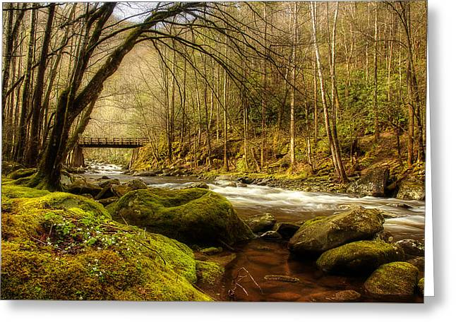 April Along The Stream Greeting Card by Mike Eingle