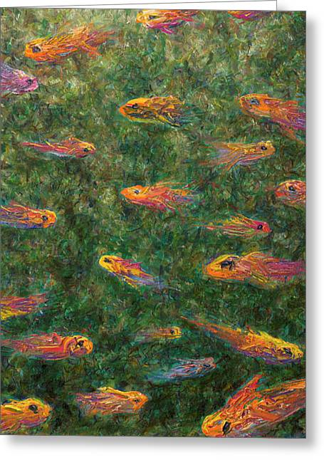 Tropical Fish Greeting Cards - Aquarium Greeting Card by James W Johnson