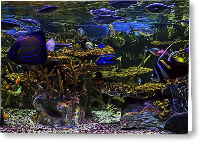 Aquarium Fish Greeting Cards - Aquarium View Greeting Card by Janet Fikar