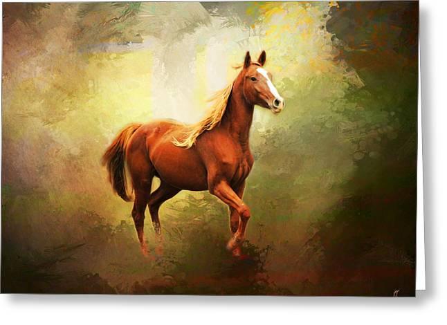 Wild Horses Greeting Cards - Arabian Horse Greeting Card by Jai Johnson