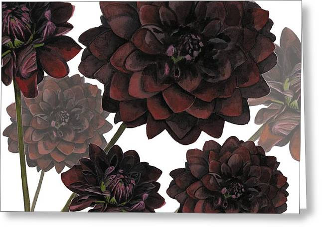 Floral Digital Art Paintings Greeting Cards - Arabian Night Greeting Card by Sarah Hough