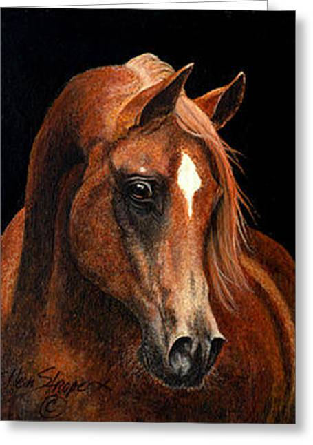 Horse Images Paintings Greeting Cards - Arabian Portrait  Greeting Card by Ellen Strope