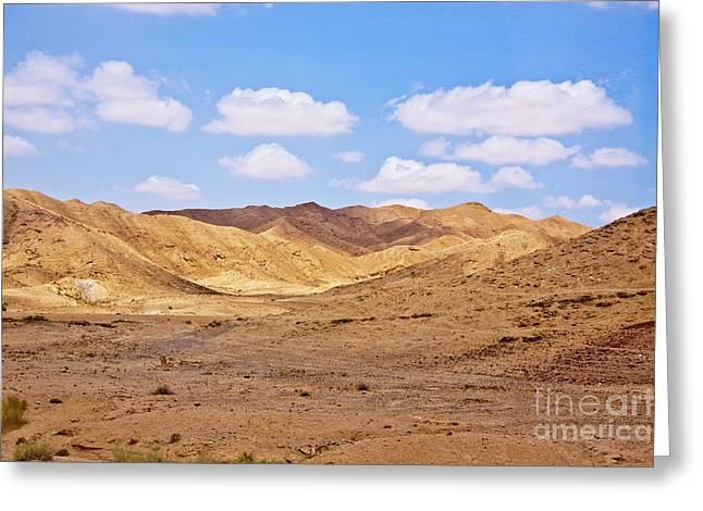 Horizontal Pyrography Greeting Cards - Arava desert Greeting Card by Aleksander Suprunenko
