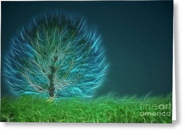 Tree Art Greeting Cards - Arbrensens - a19 Greeting Card by Variance Collections