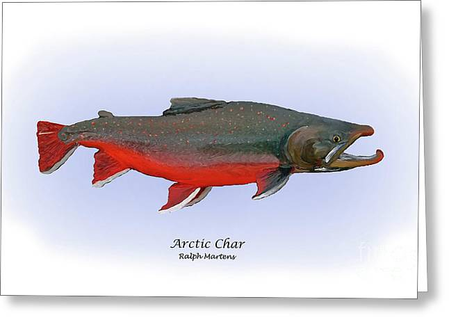 Fish Print Greeting Cards - Arctic Charr Greeting Card by Ralph Martens