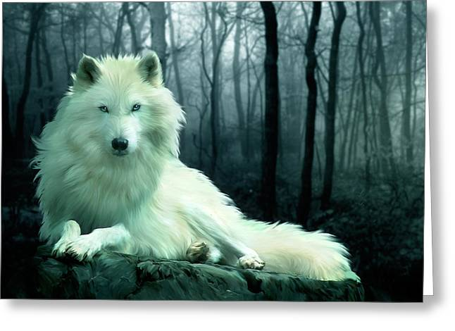 Arctic Wolf Greeting Cards - Arctic Wolf Greeting Card by Julie L Hoddinott