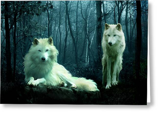 Arctic Wolf Greeting Cards - Arctic Wolves Greeting Card by Julie L Hoddinott
