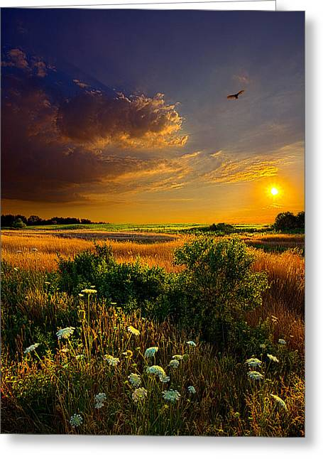 Myhorizonart Greeting Cards - Aridity Greeting Card by Phil Koch