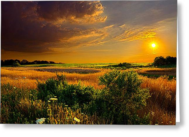 Aridity Greeting Card by Phil Koch
