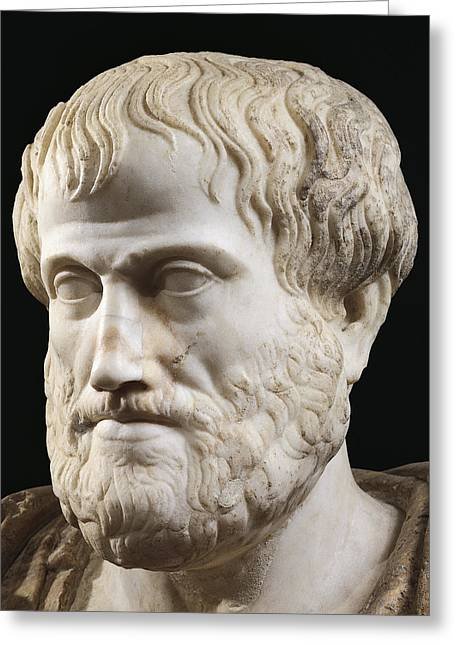 Aristotle Greeting Card by Lysippus