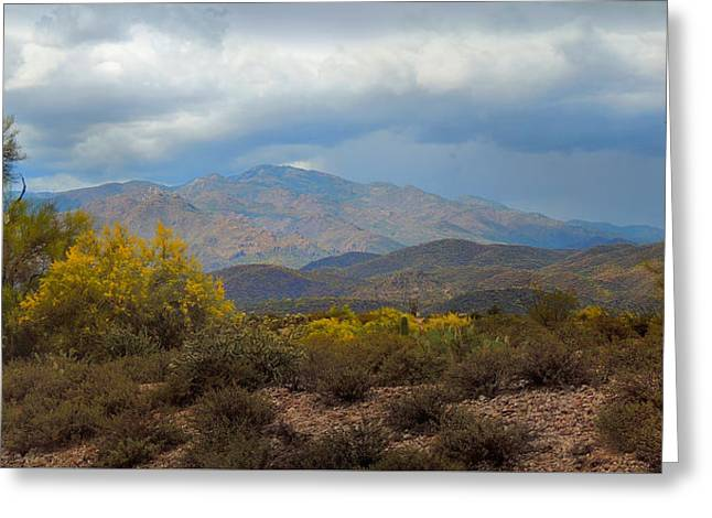 Cave Creek Cowboy Greeting Cards - Arizona Beauty Greeting Card by Gordon Beck