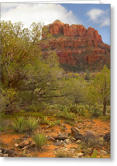 Southwest Greeting Cards - Arizona Outback 3 Greeting Card by Mike McGlothlen