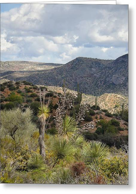 Cave Creek Western Greeting Cards - Out West Greeting Card by Gordon Beck