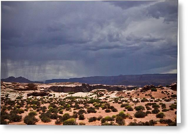 Arizona Rainy Desert Landscape Greeting Card by Ryan Kelly