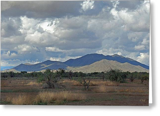 Cave Creek Cowboy Greeting Cards - Arizona Ranchland Greeting Card by Gordon Beck