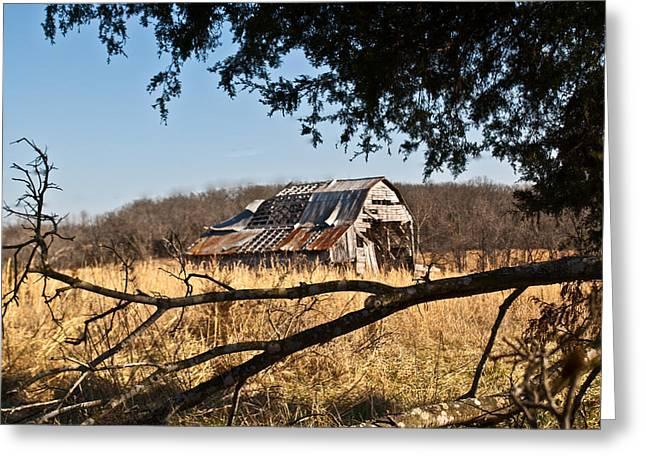 Arkansas Barn 1 Greeting Card by Douglas Barnett