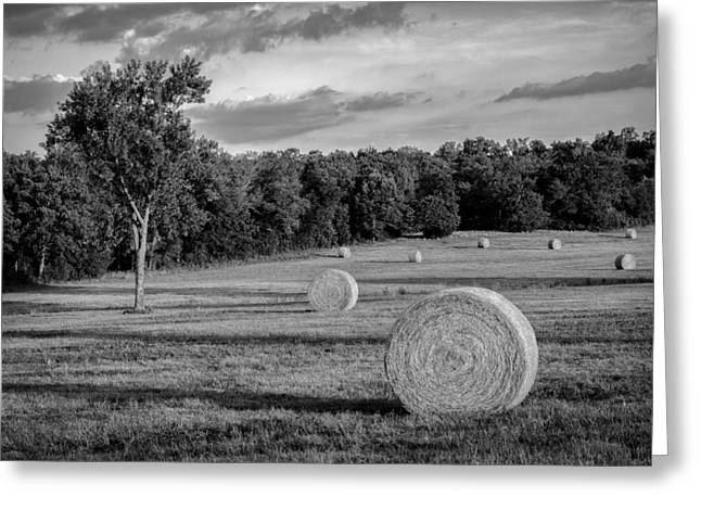Harvest Art Greeting Cards - Arkansas Hayfield BW Greeting Card by James Barber