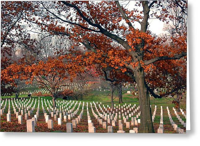 Grave Yard Greeting Cards - Arlington Cemetery in Fall Greeting Card by Carolyn Marshall