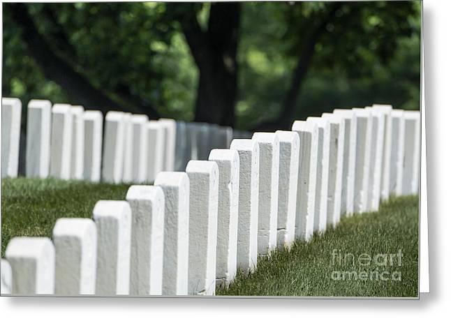 Arlington Cemetery Greeting Card by John Greim