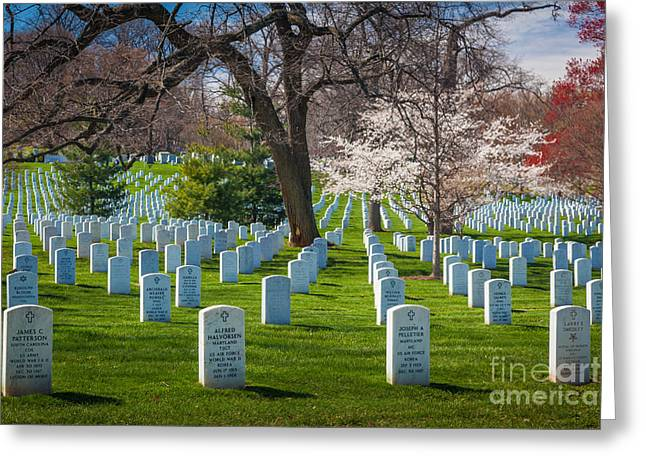 Greeting Cards - Arlington National Cemetery Greeting Card by Inge Johnsson