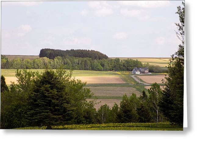 Maine Agriculture Greeting Cards - Aroostook Farmscape Greeting Card by William Tasker