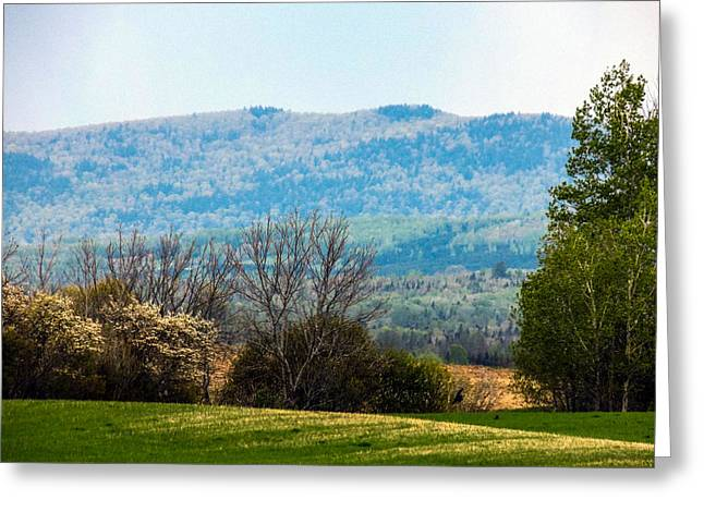 Maine Spring Greeting Cards - Aroostook Landscape Greeting Card by William Tasker