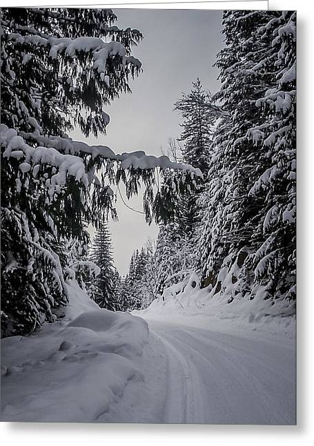 North Idaho Greeting Cards - Around the Bend Greeting Card by Albert Seger