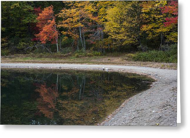 Around The Bend- Hiking Walden Pond In Autumn Greeting Card by Toby McGuire