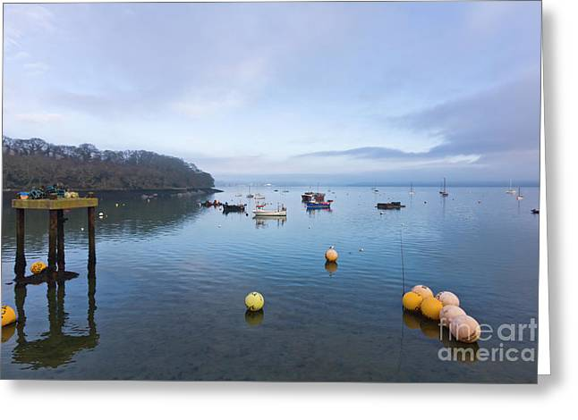 Carrick Roads From Mylor Harbour Greeting Card by Terri Waters