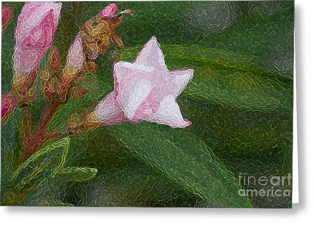 Pinks And Purple Petals Greeting Cards - Artisitc White Flower Greeting Card by Darrell Hutto