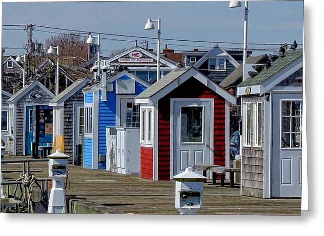 Shack Greeting Cards - Artist shacks Greeting Card by Brenda Griffin