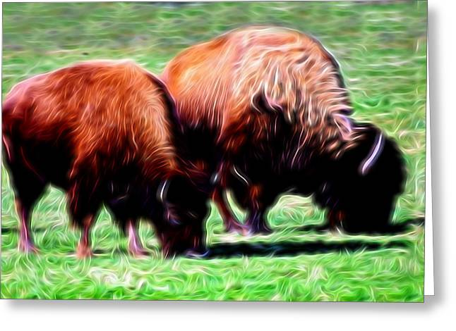Buffalo Greeting Cards - Artistic American Bison Greeting Card by Linda Phelps