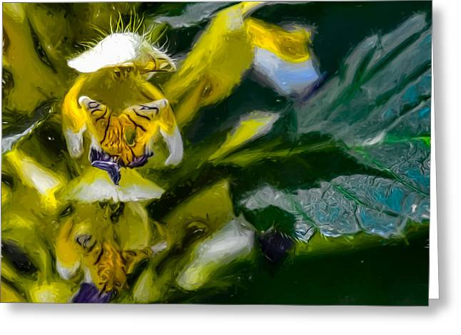 White Digital Art Greeting Cards - Artistic Butterfly in knee Greeting Card by Leif Sohlman