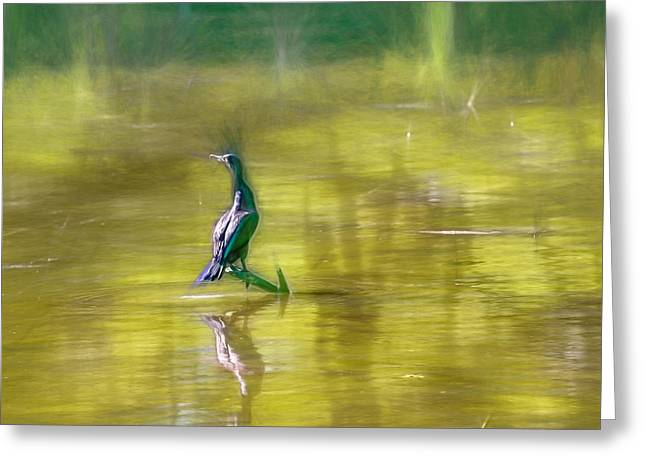Reflection In Water Greeting Cards - Artistic Cormorant May 2015 Greeting Card by Leif Sohlman
