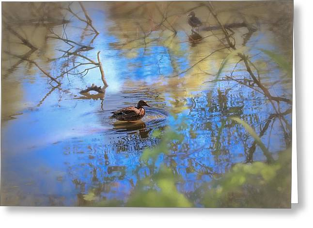 Reflecting Water Greeting Cards - Artistic Duck 2 reflection Greeting Card by Leif Sohlman