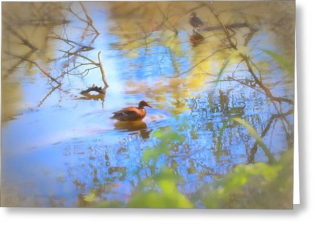 Reflection In Water Greeting Cards - Artistic Duck reflection Greeting Card by Leif Sohlman